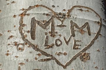 love graffiti on a tree