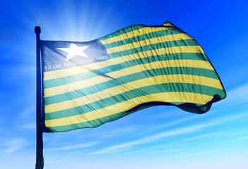 Piaui (Brazil) flag waving on the wind