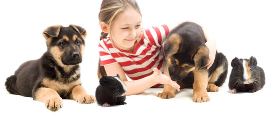 child and puppy and guinea pig