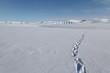 Leinwandbild Motiv Wandern auf Spitzbergen