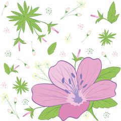 flower forest geranium
