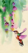 Leinwandbild Motiv Drawing of colibri bird and flowers