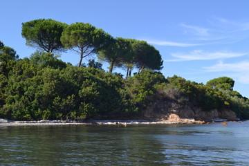 Sardegna, Conca verde