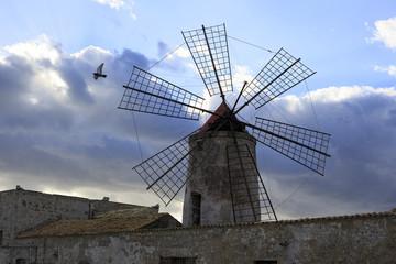 Windmill of saline of trapani