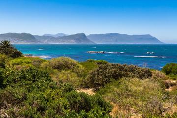 False Bay, Simons Town, South Africa