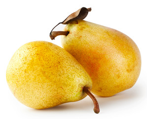 Two yellow pears with leaf