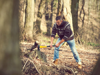 Lumberjack cutting the tree with an axe in the forest