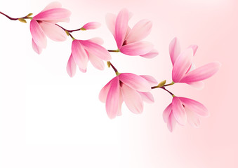 Valentine background with pink flowers. Vector.