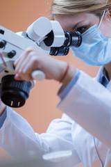 Dentistry using dental microscope