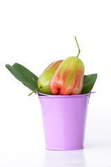 Red ros e apple in cistern - Stock Image