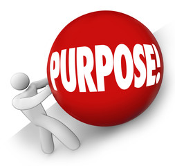 Purpose Ball Rolling Uphill Goal Mission Objective in Life Caree