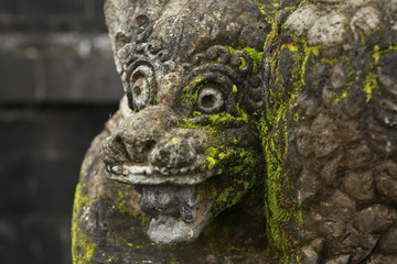 Green Moss Growing on Hanuman Statue