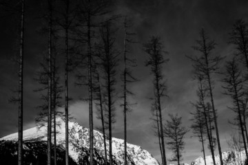 Fine art black and white mountain landscape