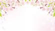 Cherry Blossom background-above