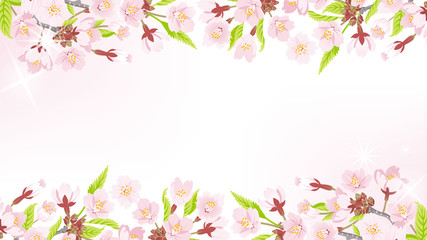 Cherry Blossom background-frame