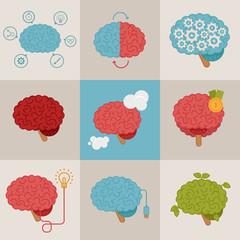 Brain concepts set