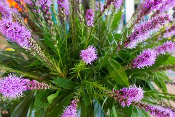 Purple flowers on a beautifully arranged bouquet