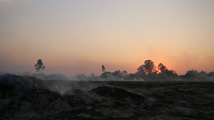 Evening scene of rice farm in Thailand , Farmer to burning rice