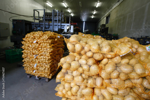 Bagged potatoes