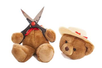 Bear cut head of
