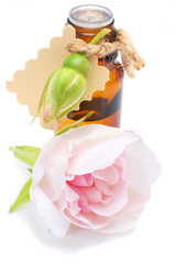 Bottle with rose oil isolated on white background
