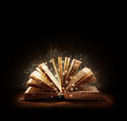 Magical book or bible