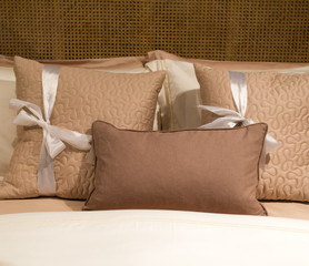 Shades of Brown Pillows