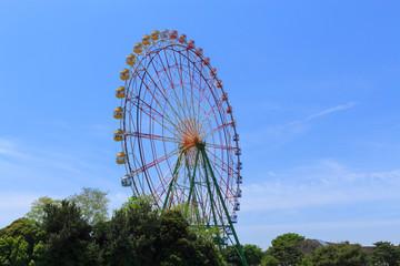 Ferries wheel at the Hitachi Seaside Park in Hitachinaka city, I