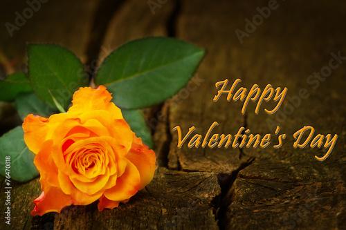 canvas print picture Rose auf Holz zum Valentinstag