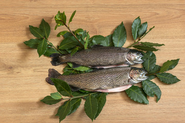 two trout on clean