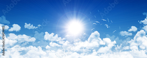 canvas print picture Clear sky, bright sun and birds
