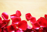 Red rose and hearts Valentines Day