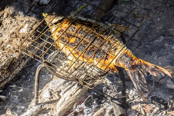 Grilled fish, iron grill, fire, wood, charcoal.