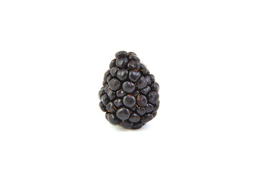 Closeup of one blackberry on white background.