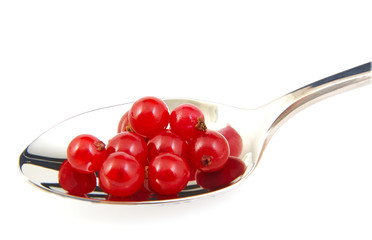 Bunch of red currants on a metal spoon.