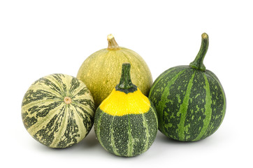 Colorful pumpkin on white background