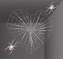 Spiders with heart. Illustration 10 version