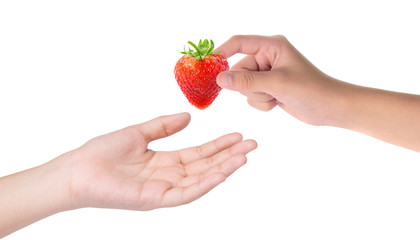 Female hand holding red strawberry isolated on white