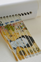 Korean Currency