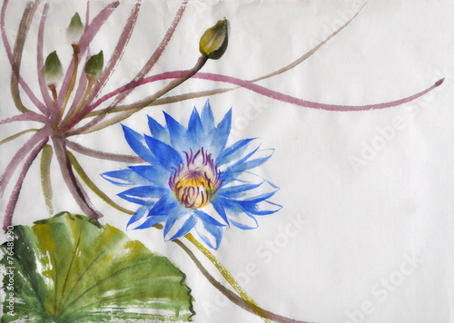 Fotobehang Lotusbloem Nymphea flower watercolor painting