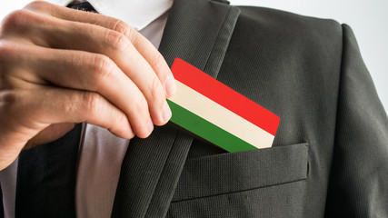 Wooden card painted as the Hungarian flag