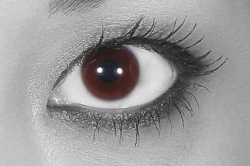 Oeil asiatique, vision....