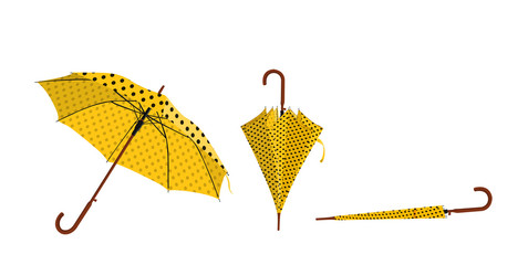 ombrello ape