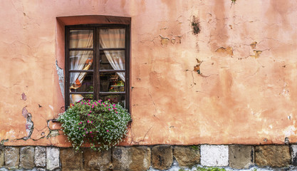 Old window with florist