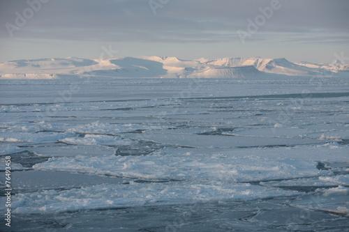 Foto op Aluminium Antarctica 2 Eisfjord auf Spitzbergen