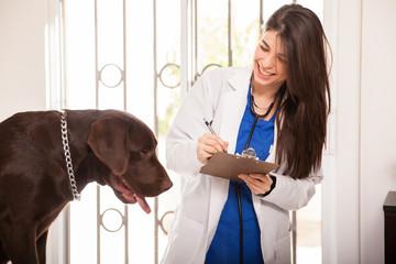 Updating a dog's medical history
