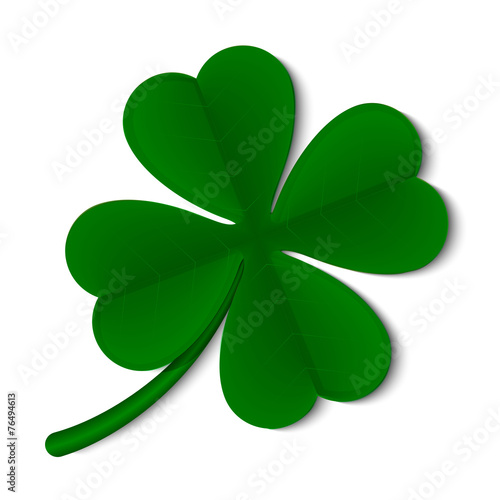 leaf clover isolated on white background