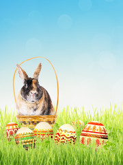 Easter bunny in the basket