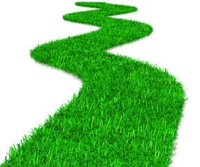 Green Grass Way