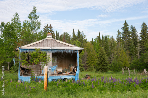 canvas print picture Abandoned House or Shack in the Woods